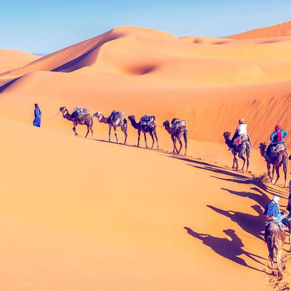 Desert marocain en chameau